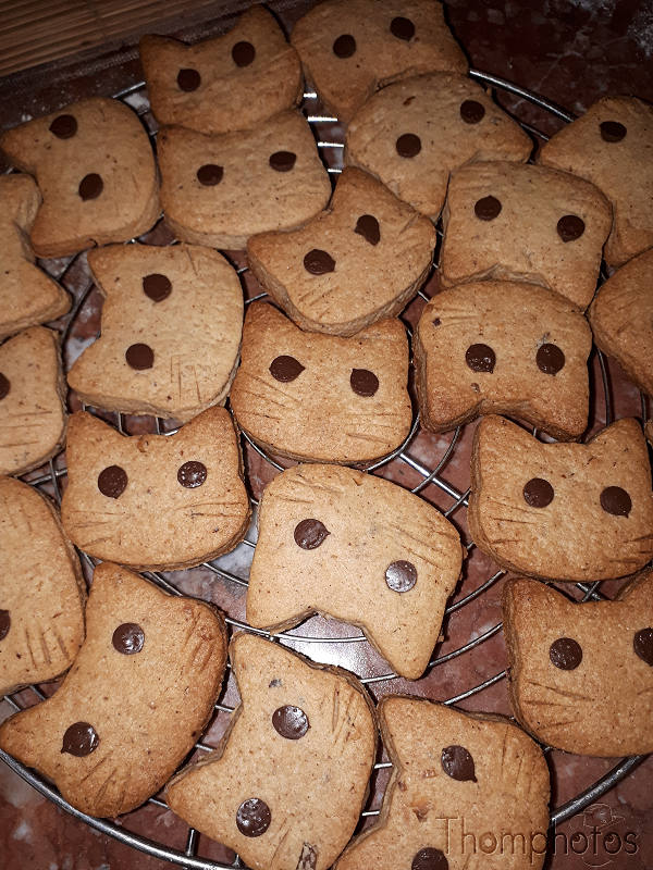 cuisine cooking plat repas meal maison hand made craft cookies biscuits chocolats têtes de chat cat head 3D impression moule