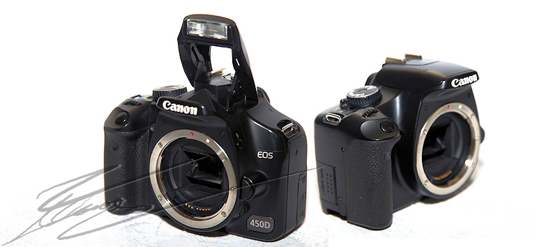 Canon EOS 450D 450 D APS-C aps c apsc review test photo porn porno camera body boitier nu